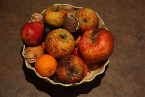 rotting fruit picture 3