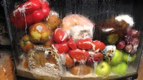 rotting fruit picture 8